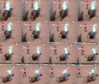 Dustin riding bulls